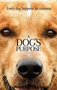 A Dog's Purpose @ Charles Hicking Park